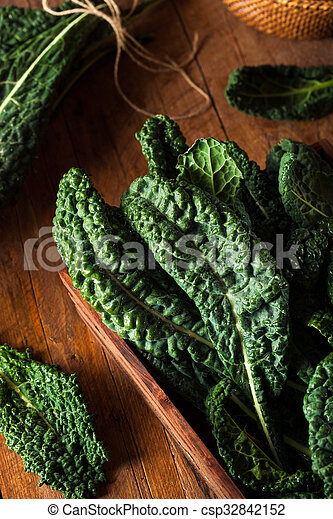 Lacinato kale verde orgánico - csp32842152