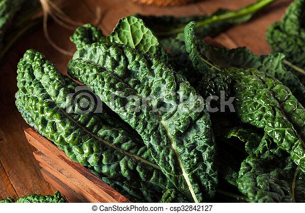 Lacinato kale verde orgánico - csp32842127