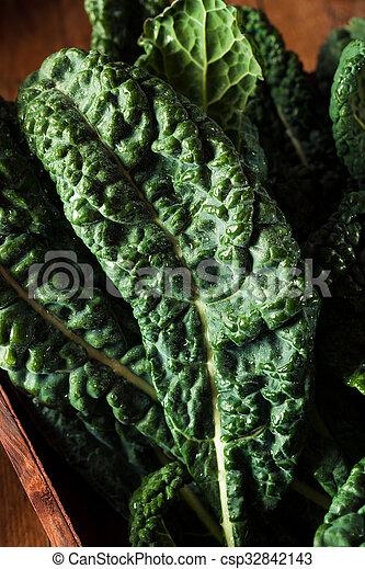 Lacinato kale verde orgánico - csp32842143
