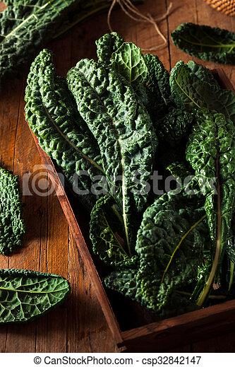 Lacinato kale verde orgánico - csp32842147