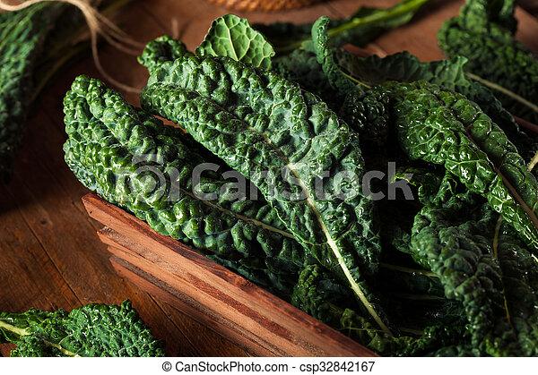 Lacinato kale verde orgánico - csp32842167
