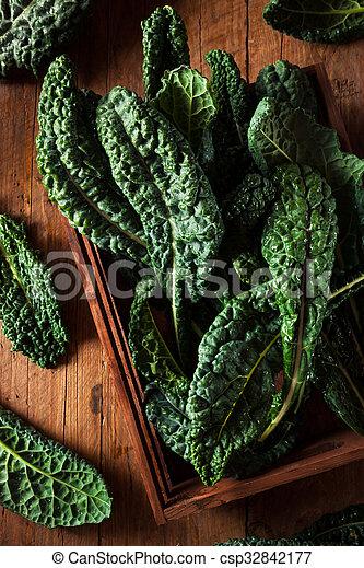 Lacinato kale verde orgánico - csp32842177