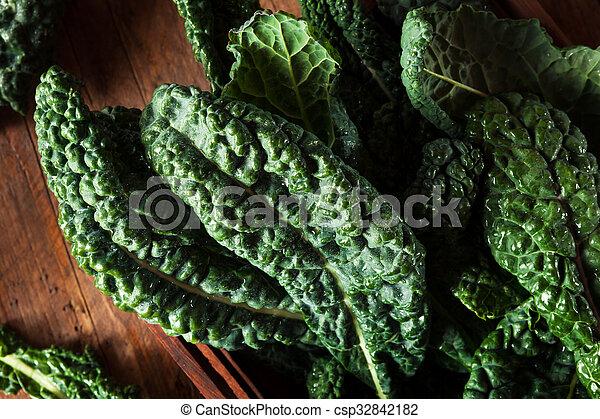 Lacinato kale verde orgánico - csp32842182
