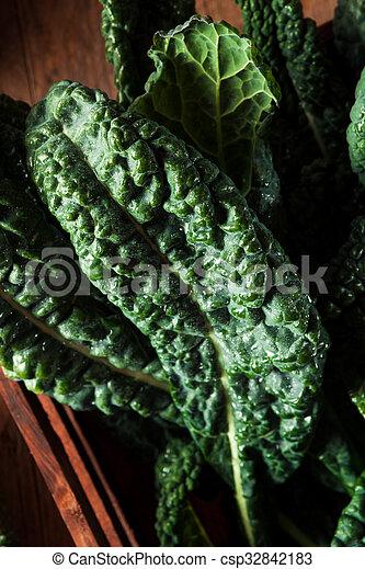 Lacinato kale verde orgánico - csp32842183