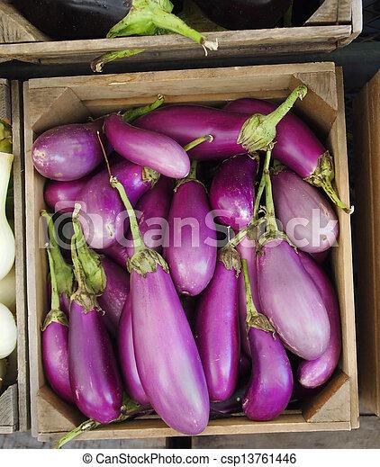 Organic Asian Eggplants - csp13761446
