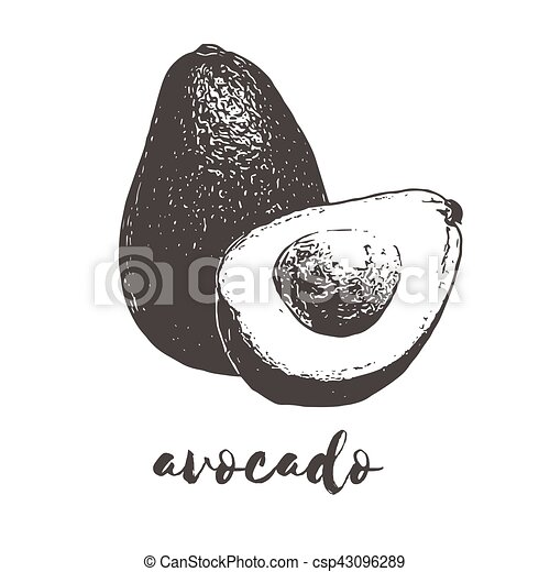 organic avocado fruit - csp43096289