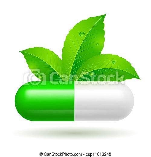 Organic capsule - csp11613248