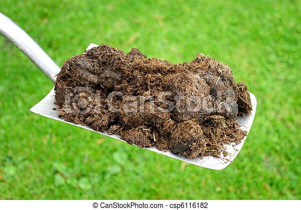 Organic Compost On Gardening Spade Fresh Organic Compost