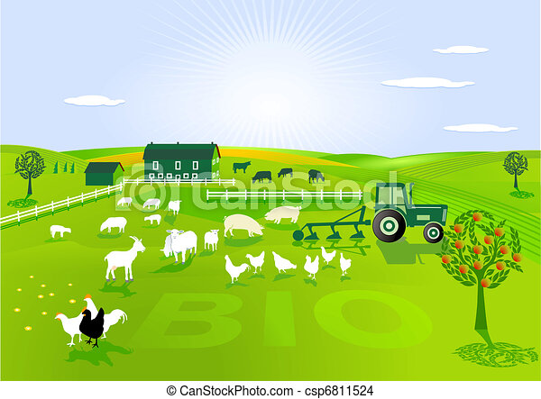 organic farming - csp6811524