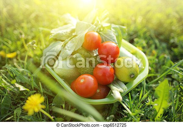 Organic food outdoors - csp6512725