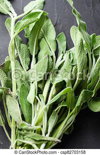 Organic fresh sage on black background side view close up. - csp82703158