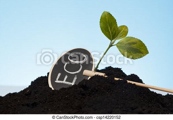 organic grow - csp14220152