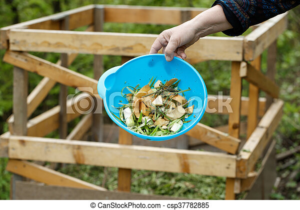 Organic kitchen waste gathered for composting - csp37782885