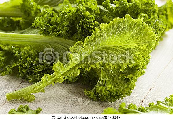 Organic Raw Mustard Greens - csp20776047