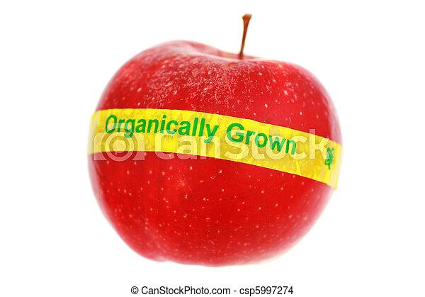organický, jablko, zralý, slabý ohnisko, osamocený, white., label., červeň, dof - csp5997274