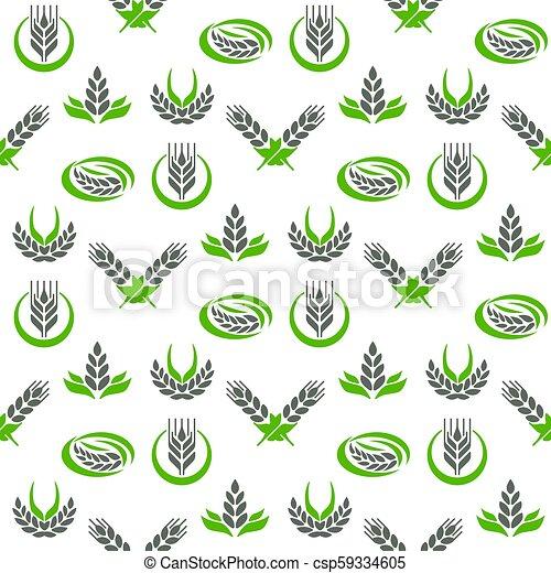 organiczny, zboże ziarnuje, jadło, próbka, przemysł, seamless, ilustracja, wektor, projektować, tło, kasownik, symbol rolnictwa, kłosie - csp59334605