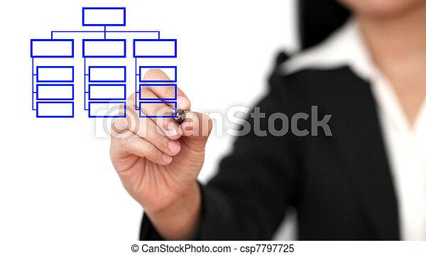 organisation, zeichnung, geschaeftswelt, tabelle - csp7797725