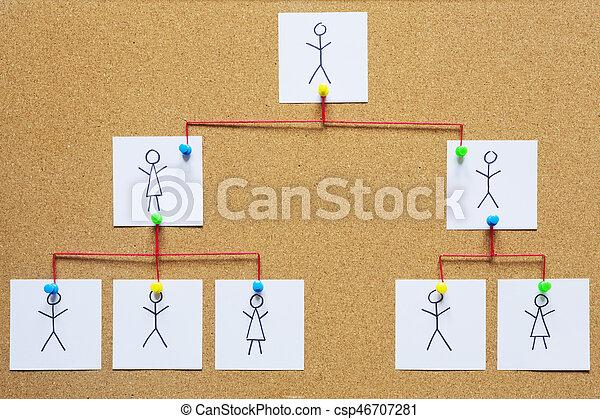 Visualization of an organization chart on a cork bulletin board.