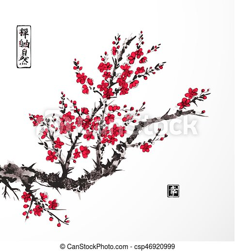 https://comps.canstockphoto.com/oriental-sakura-cherry-tree-in-blossom-drawing_csp46920999.jpg