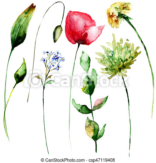 Original Set Watercolor Spring Flowers