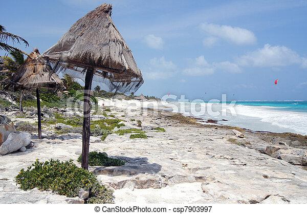 En la costa del mar - csp7903997