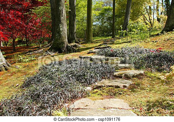 Ornamental Garden - csp1091176