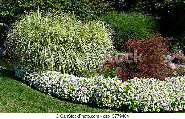 Ornamental grass formal garden landscape with green lush stock ornamental grass csp13779404 workwithnaturefo