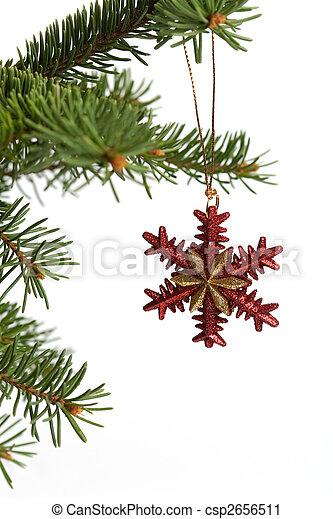 Ornamento de Navidad - csp2656511