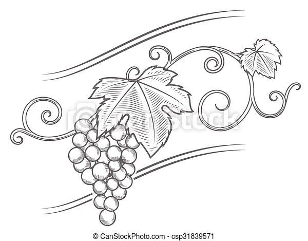 Vector de ornamento de ramas de uva - csp31839571