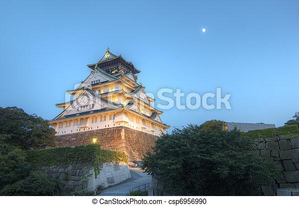 Osaka Castle - csp6956990