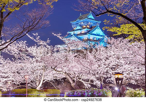 Osaka, Japan Castle - csp24927638