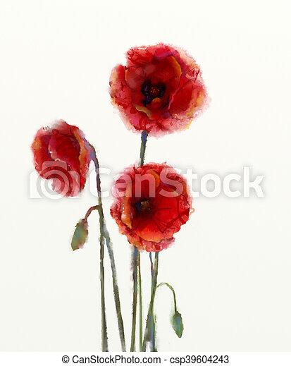 Osamoceny Barva Vodova Graficke Pozadi Mak Beloba Kvetovat