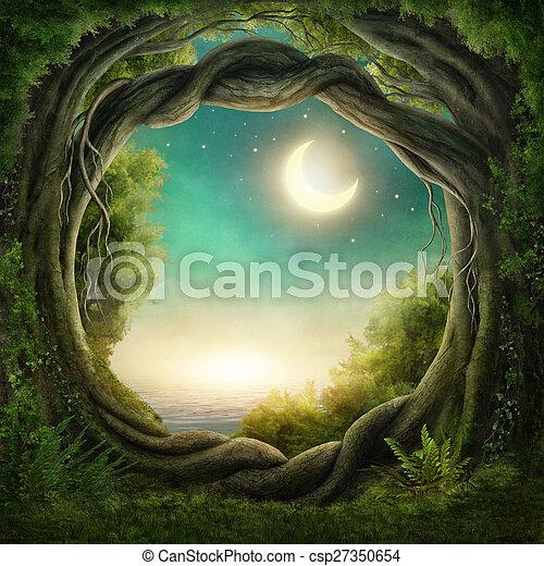 oscuridad, encantado, bosque - csp27350654