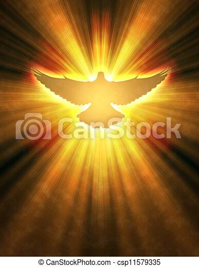 Una paloma brillante con rayos en la oscuridad - csp11579335