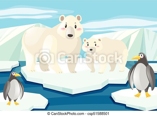 Osos polares y pingüinos sobre hielo - csp51588501