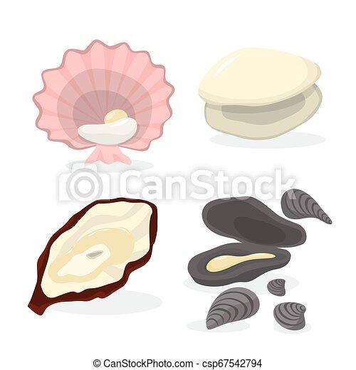 Ostra y almejas. Colección de mariscos - csp67542794