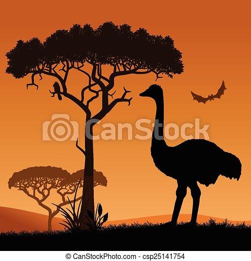 Ostrich.  - csp25141754