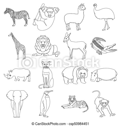 Ostrich emu, crocodile, giraffe, tiger, penguin and other wild animals. Artiodactyla, mammalian predators and animals set collection icons in outline style vector symbol stock illustration web. - csp50984451
