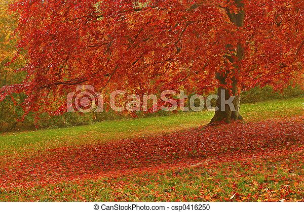 otoño - csp0416250