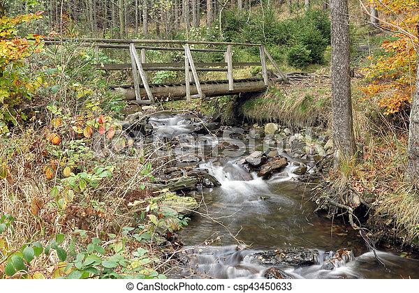 Brook en el bosque de otoño - csp43450633