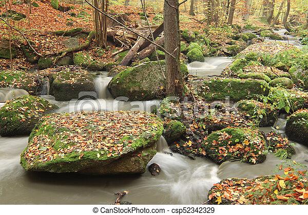 Brook en el bosque de otoño - csp52342329