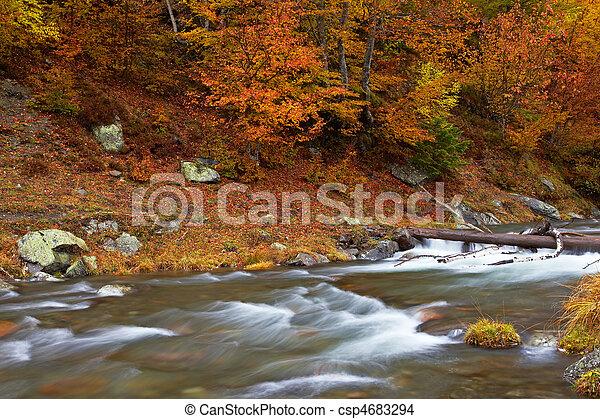 Autumn brook - csp4683294