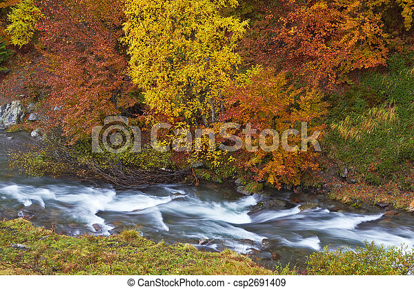 Autumn brook - csp2691409