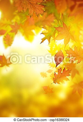 otoño, caer sale - csp16388324