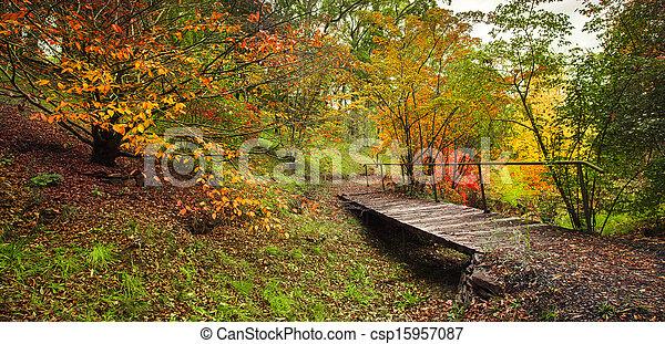 Paseo de otoño - csp15957087