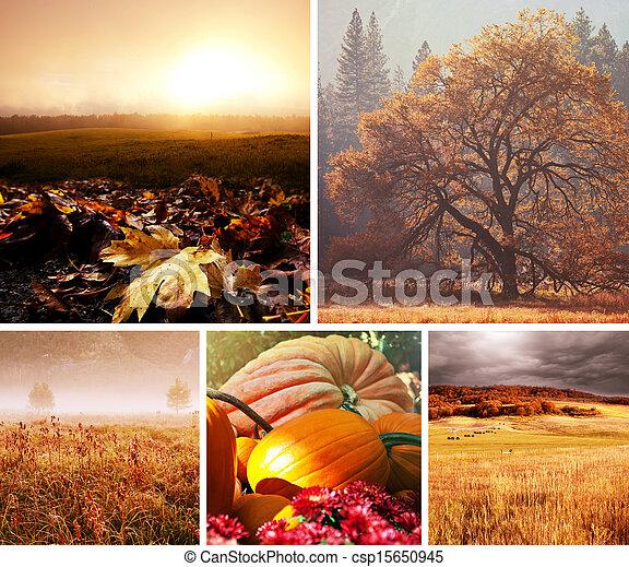 otoño, collage - csp15650945