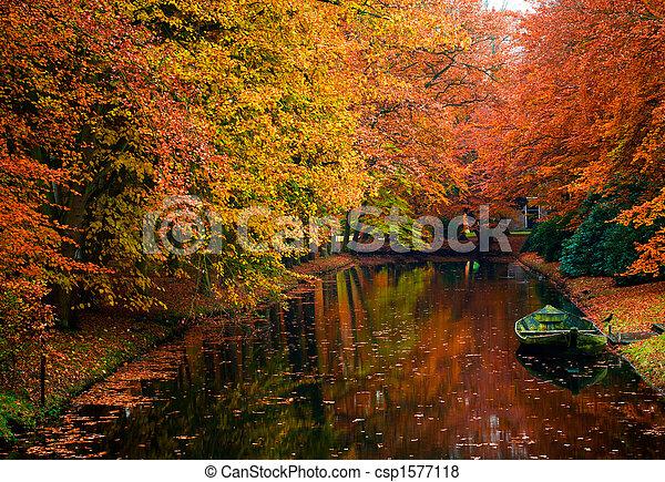 Colores de otoño en el bosque - csp1577118