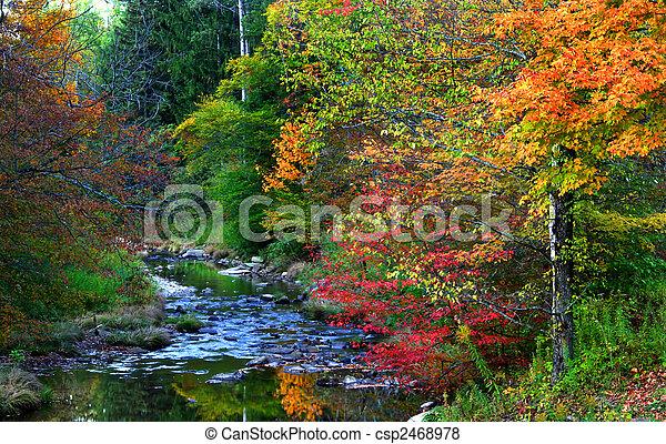 Un paisaje escénico de otoño - csp2468978