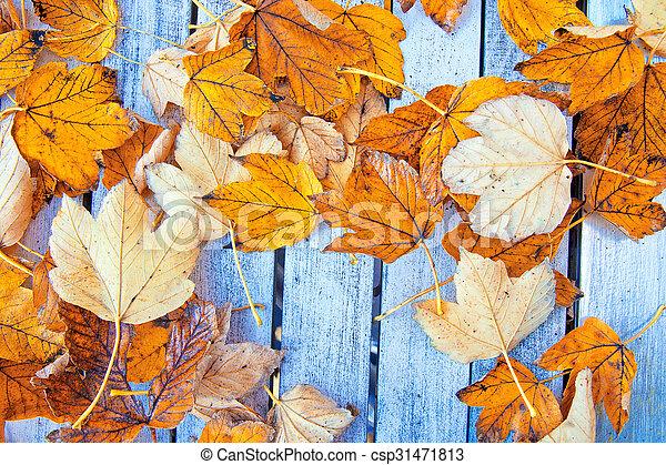Trasfondo de otoño. - csp31471813