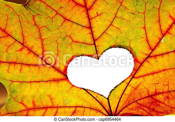 otoño, forma corazón, hoja, agujero - csp6954464